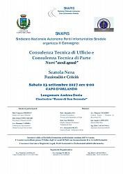 Consulenza Tecnica di Ufficio e Consulenza Tecnica di Parte - Capo D Orlando